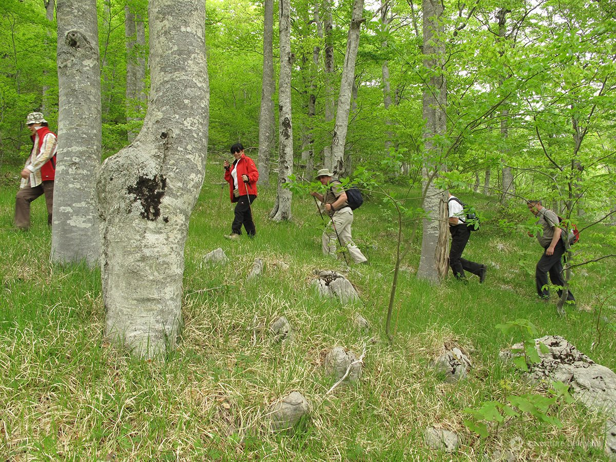 Hiking activity in beautiful nature on Mount Velebit