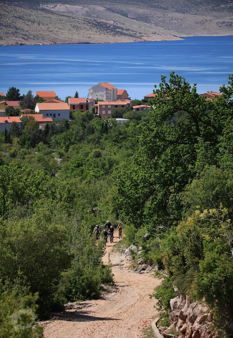 Discover trails with beautiful landscape views with us