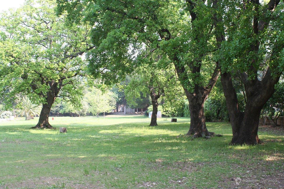 Botanical garden on Lokrum