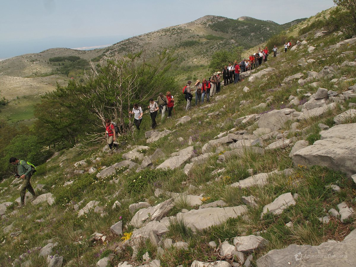 Hiking on Velebit mountain