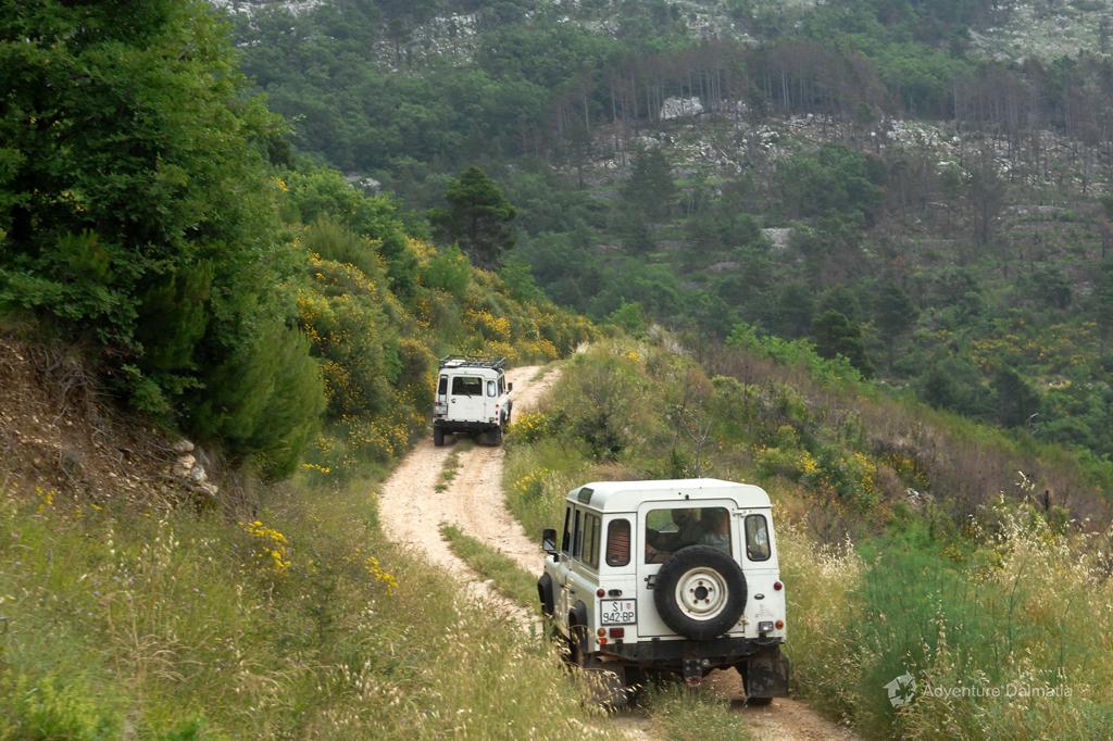 Depender Jeeps