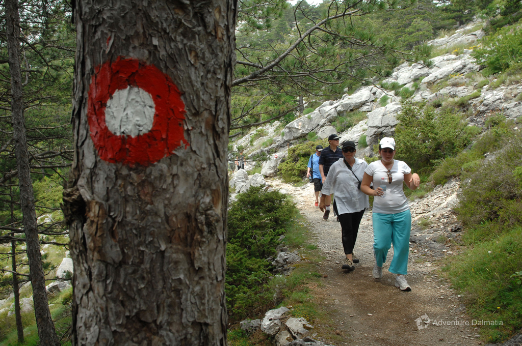 Hiking path on Mount Mosor